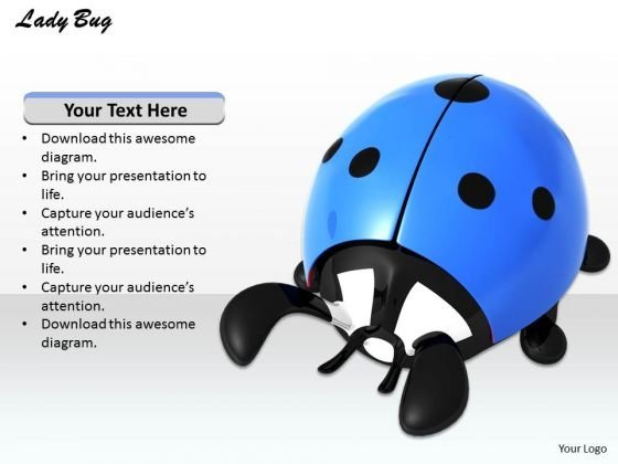 Stock Photo Blue Lady Bug On White Background PowerPoint Slide