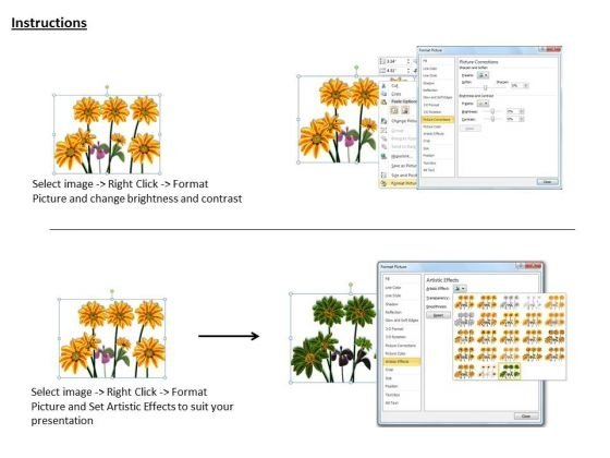 stock_photo_bunch_of_sunflowers_powerpoint_template_3