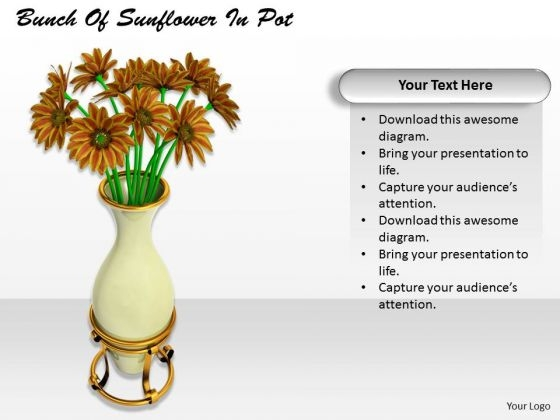 Stock Photo Business Plan Strategy Bunch Of Sunflower Pot Best Stock Photos