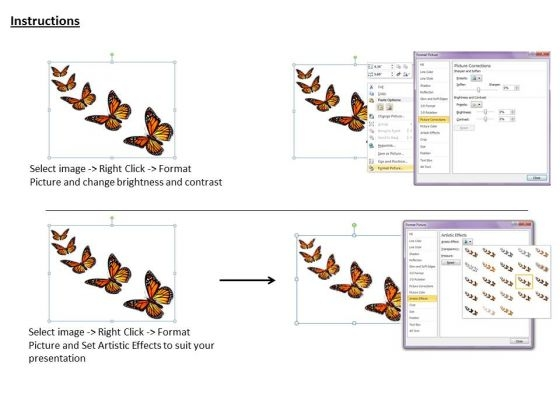 stock_photo_butterflies_isolated_on_white_background_ppt_template_3