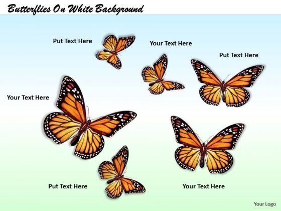Stock Photo Butterflies On White Background PowerPoint Template