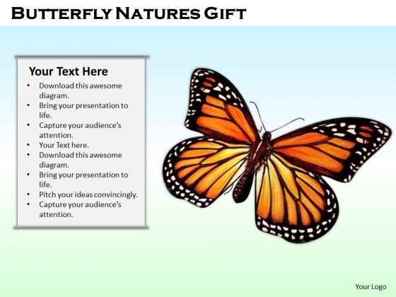 Stock Photo Butterfly Natures Gift PowerPoint Template