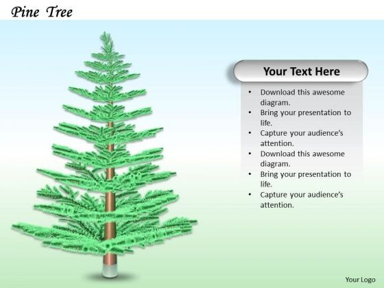 Stock Photo Creative Design Of Pine Tree PowerPoint Slide