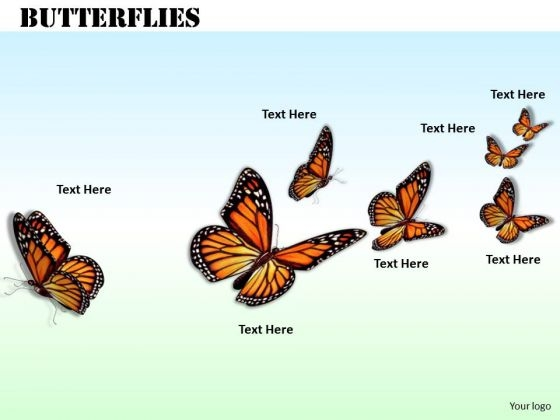 Stock Photo Flying Butterflies Nature Theme PowerPoint Slide