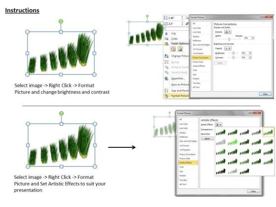 stock_photo_graph_of_growing_green_grass_powerpoint_slide_3