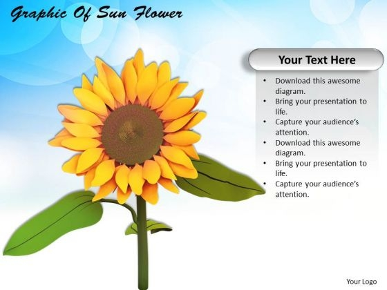 Stock Photo Graphic Of Sun Flower PowerPoint Template