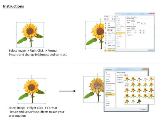 stock_photo_graphic_of_sun_flower_powerpoint_template_3