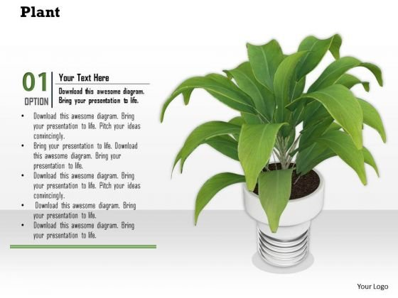 Stock Photo Graphics Of Green Plant In Vase PowerPoint Slide