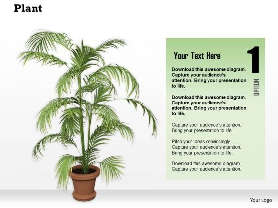 Stock Photo Graphics Of Vase With Green Plant PowerPoint Slide