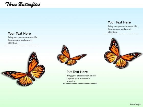 Stock Photo Illustration Of Colorful Butterflies Pwerpoint Slide