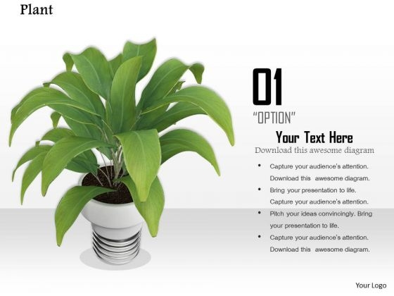 Stock Photo Illustration Of Green Plant In White Vase PowerPoint Slide