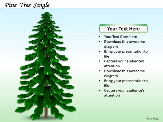 Stock Photo Illustration Of Pine Tree PowerPoint Slide