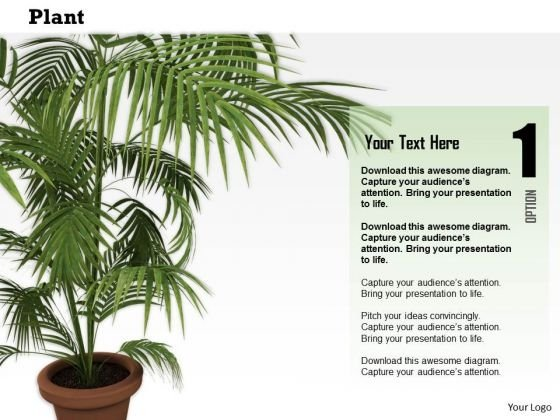 Stock Photo Illustration Of Vase With Green Plant PowerPoint Slide