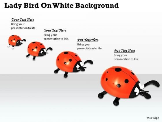 Stock Photo Lady Birds On White Background PowerPoint Slide