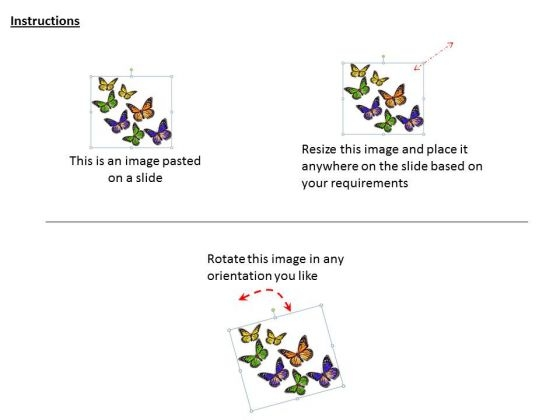 stock_photo_multicolor_butterflies_graphic_powerpoint_template_2
