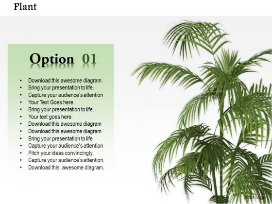 Stock Photo Plant Trees For Environment PowerPoint Slide