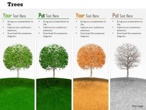Stock Photo Trees Depicting Four Seasons Pwerpoint Slide