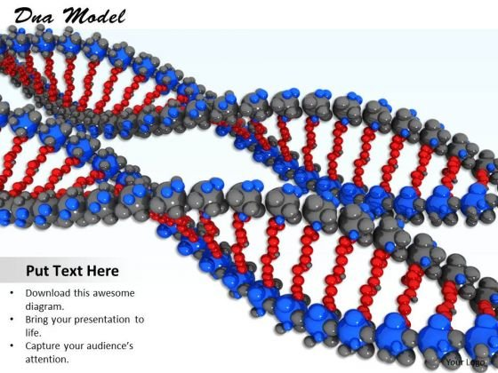 Stock Photo Two Colorful Dna Designs For Biology PowerPoint Slide