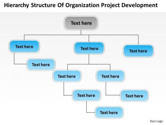 structure of organization project development ppt business plan