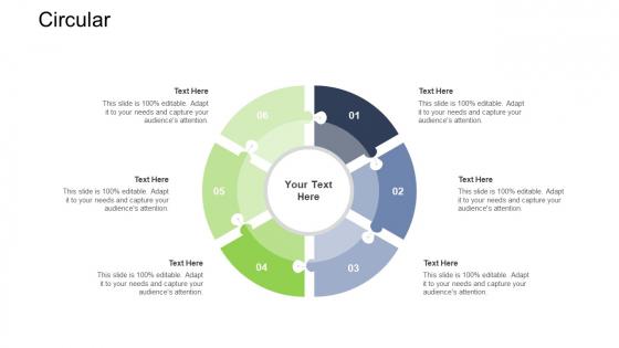 Tactical Merger Circular Ppt Ideas Example Topics PDF