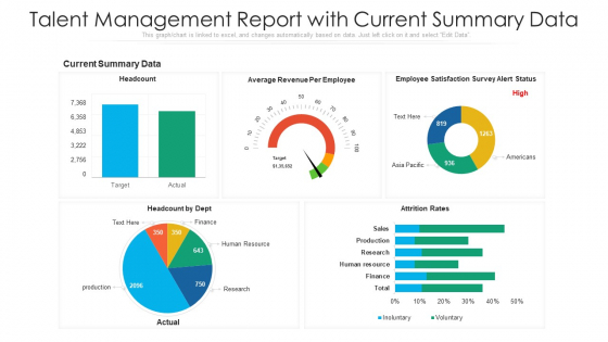 Talent Management Report With Current Summary Data Ppt Gallery Example Topics PDF