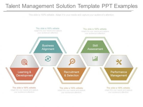 Talent Management Solution Template Ppt Examples