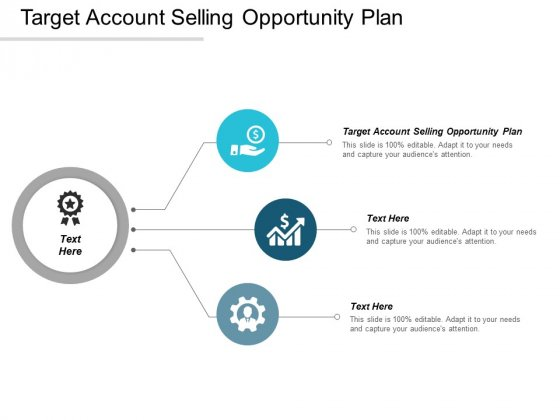 Target Account Selling Opportunity Plan Ppt PowerPoint Presentation Infographics Slide Cpb