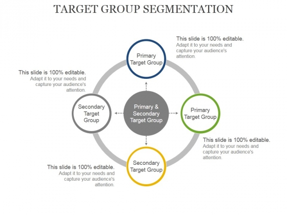 Target Group Segmentation Ppt PowerPoint Presentation Professional Guidelines