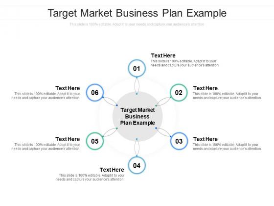 Target Market Business Plan Example Ppt PowerPoint Presentation Portfolio Design Templates Cpb