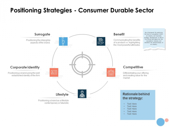Target Market Positioning Strategies Consumer Durable Sector Ppt Summary Microsoft PDF