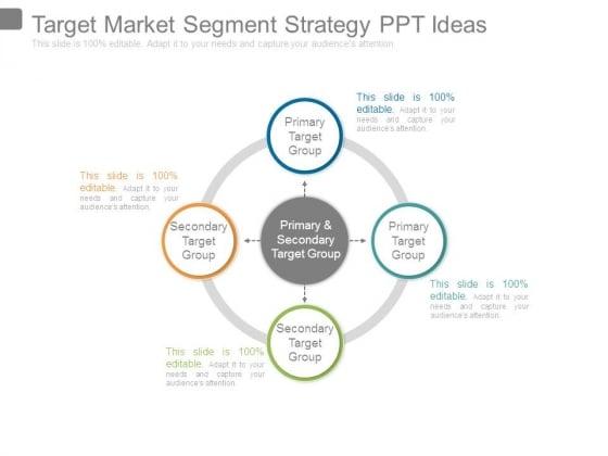 Target Market Segment Strategy Ppt Ideas