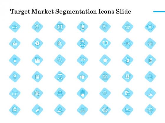 Target Market Segmentation Icons Slide Ppt PowerPoint Presentation Slides Tips PDF