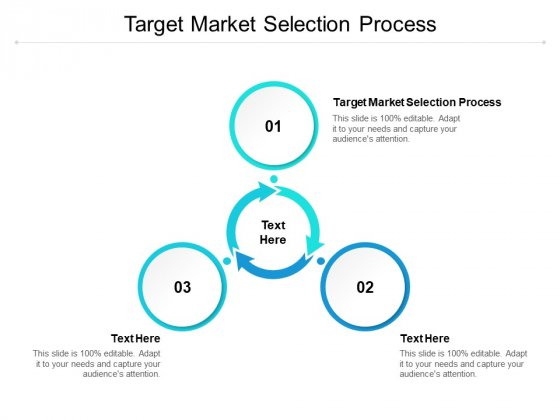 Target Market Selection Process Ppt PowerPoint Presentation Gallery Objects Cpb