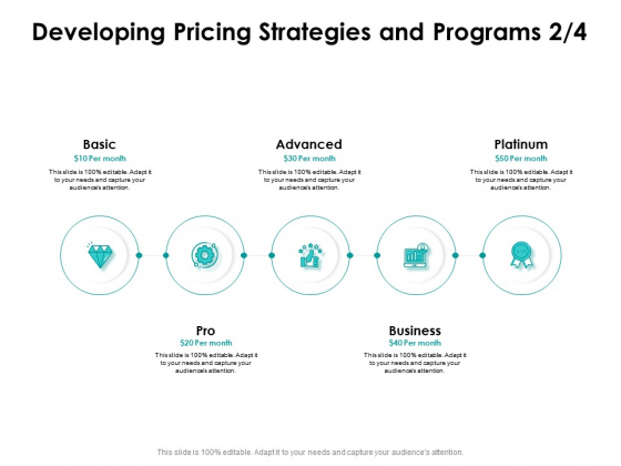 Target Market Strategy Developing Pricing Strategies And Programs Basic Ppt Infographics Infographics PDF