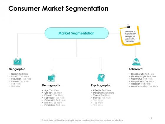 Target_Market_Strategy_Ppt_PowerPoint_Presentation_Complete_Deck_With_Slides_Slide_17