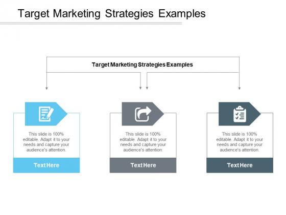Target Marketing Strategies Examples Ppt PowerPoint Presentation Portfolio Cpb