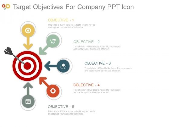 Target Objectives For Company Ppt Icon