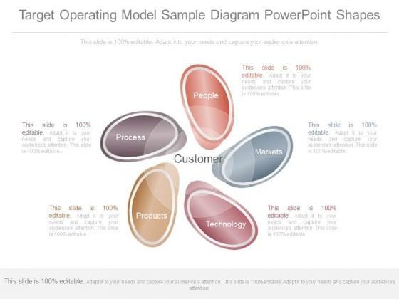 Target Operating Model Sample Diagram Powerpoint Shapes