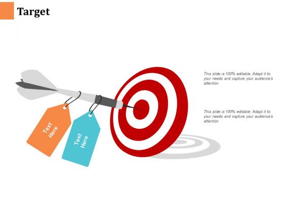 Target Ppt PowerPoint Presentation Portfolio Example