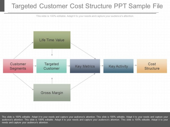 Targeted Customer Cost Structure Ppt Sample File