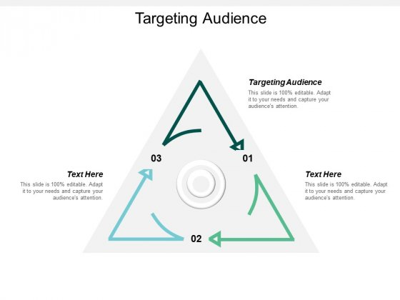Targeting Audience Ppt PowerPoint Presentation Ideas Pictures Cpb