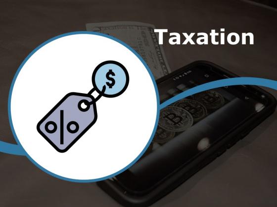 Taxation Ppt PowerPoint Presentation Styles Portfolio