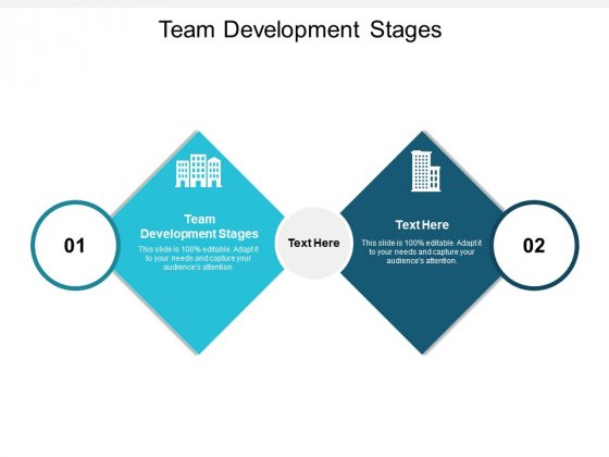 Team Development Stages Ppt PowerPoint Presentation Slides Templates Cpb
