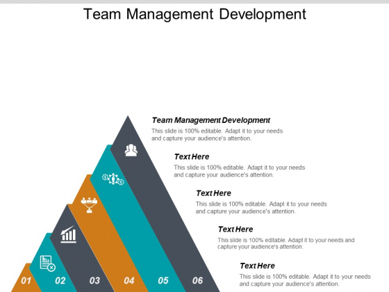 Team Management Development Ppt PowerPoint Presentation Infographic Template Slides Cpb
