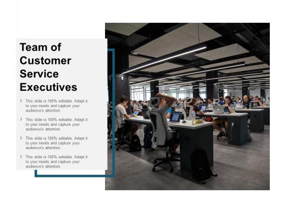 Team Of Customer Service Executives Ppt Powerpoint Presentation Ideas Good