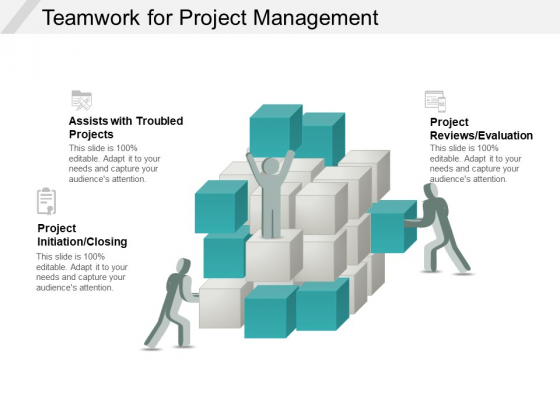 Teamwork For Project Management Ppt PowerPoint Presentation Pictures Diagrams