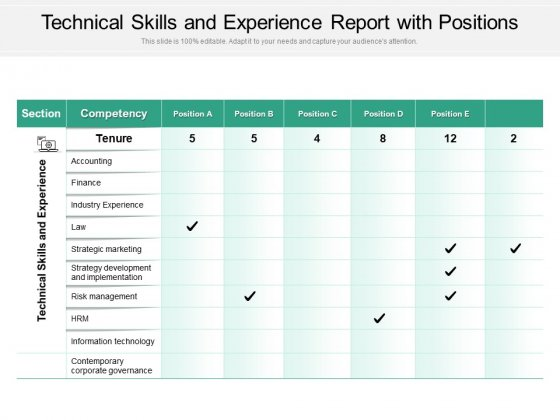 Technical Skills And Experience Report With Positions Ppt PowerPoint Presentation Gallery PDF