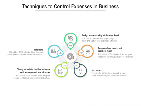 Techniques To Control Expenses In Business Ppt PowerPoint Presentation Infographics Visual Aids