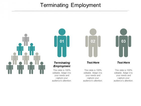 Terminating Employment Ppt PowerPoint Presentation Layouts Designs Cpb