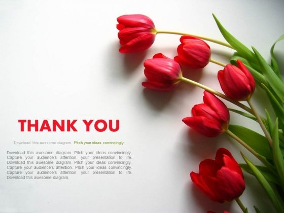 thank you powerpoint templates, backgrounds presentation slides, Modern powerpoint
